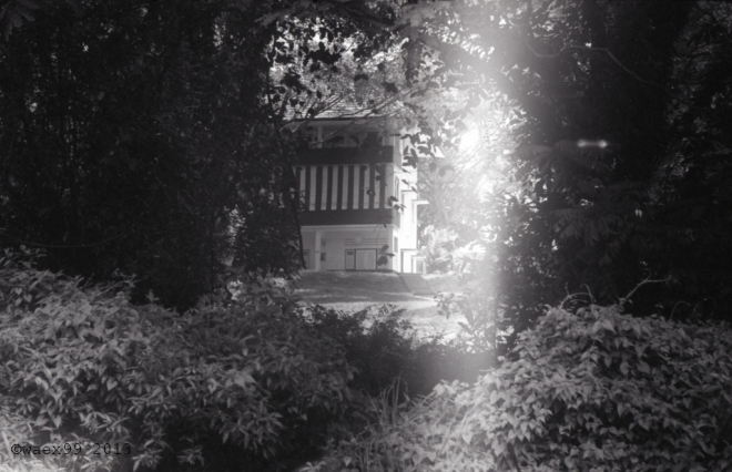 A black and white house in the greenery