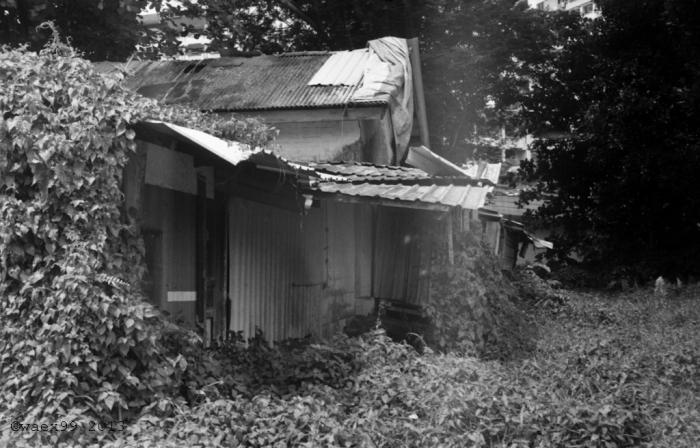 A shack along the road