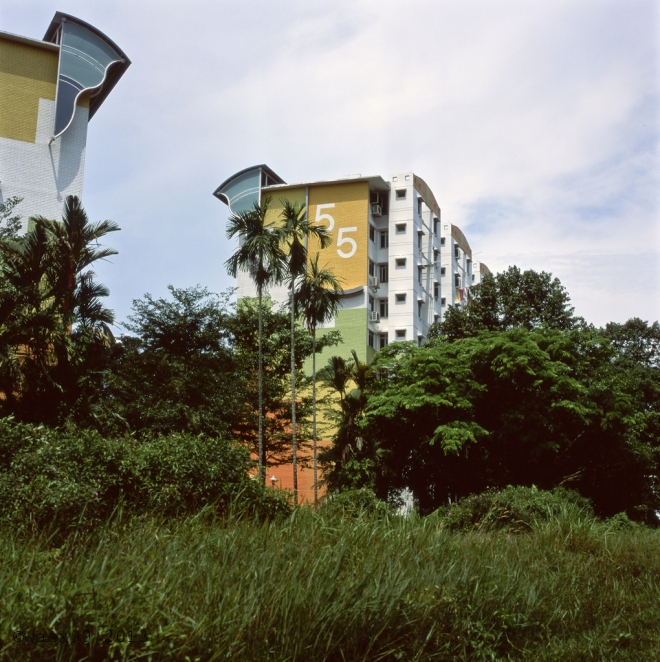 Habitation blocks along the green corridor